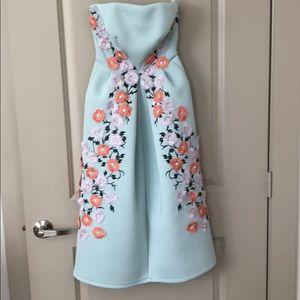 ASOS Salon Strapless Floral Appliqué Dress